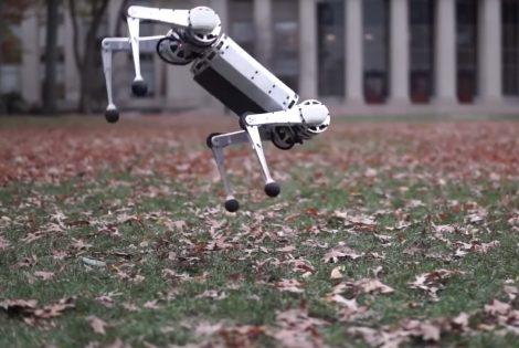 Mini Cheetah Robot (video)