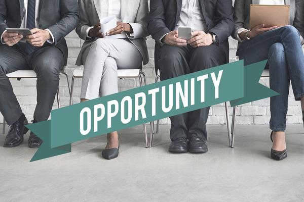 JOB Opportunity at World Health Organization
